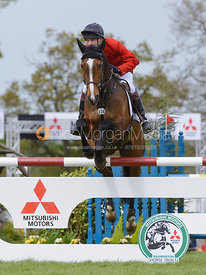 Harry Meade and WILD LONE - Show Jumping phase, Mitsubishi Motors Badminton Horse Trials 2014