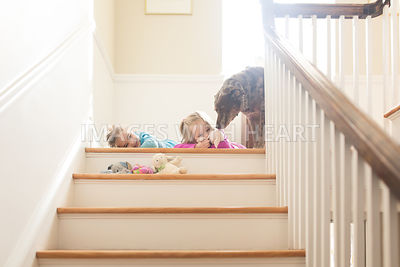 DOg and girls on staircase lifestyle
