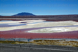 Borax deposits in Laguna Colorada, tourists walking along shore  and Cerro Pabellon Chico, Eduardo Avaroa Andean Fauna Nation...