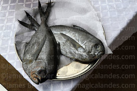 Pacific pomfret or reineta fish offering on table before mass for St Peter and St Paul festival, Arica, Chile