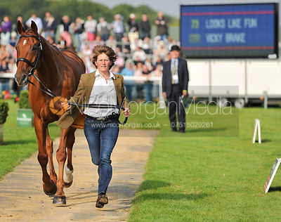 Vicky Brake and Looks Like Fun - 2nd Inspection - Burghley 2010