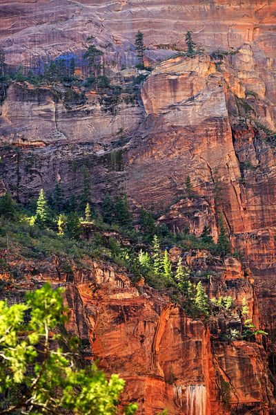 Red Rock Mountainside Zion Canyon