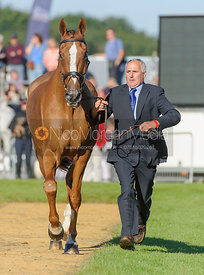 HARBOUR PILOT C - The final vets inspection (trot up),  Land Rover Burghley Horse Trials, 8th September 2013.