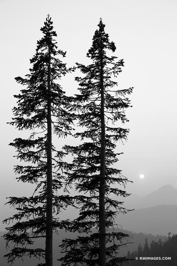 SUNSET MOUNT RAINIER NATIONAL PARK WASHINGTON BLACK AND WHITE VERTICAL