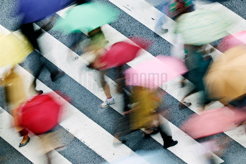 High angle view of people walking across street with umbrellas