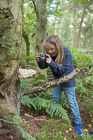 Young girl photographing nature in woodland North Norfolk in summer (model released - Charlotte Tipling)