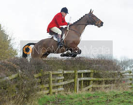 Peter Collins jumping a hedge with the The Belvoir Hounds at Ingarsby Hall 3/2