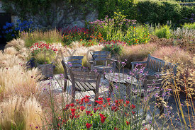 Seating area on decking surrounded by hot colour-themed planting and ornamental grasses: arctotis, Stipa tenuissima, Verbena ...
