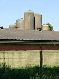 Voedersilos kippenstal | Food silos chicken farm