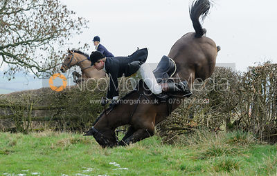 jumping the hedge below Wilson's covert
