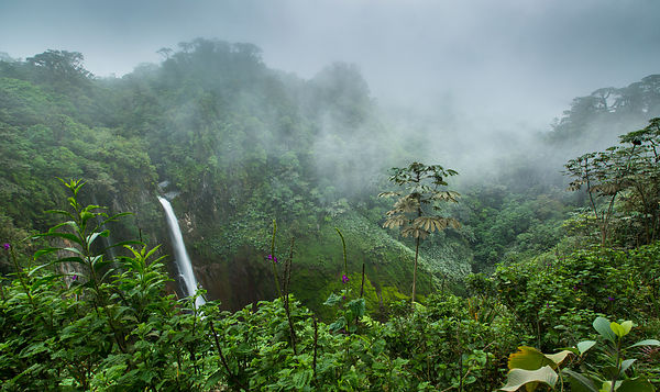 Catarata del Torro, Caribbean Cloud Forest, Costa Rica...