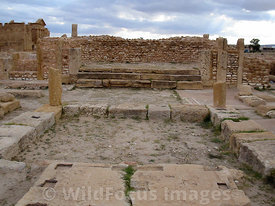 The Basilica of St Vitalis built in the 6th century AD, Sbietla Tunisia; Landscape