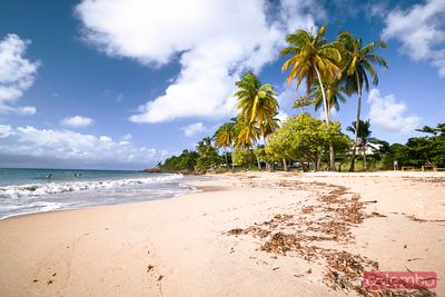 Tropical beach in Caribbean