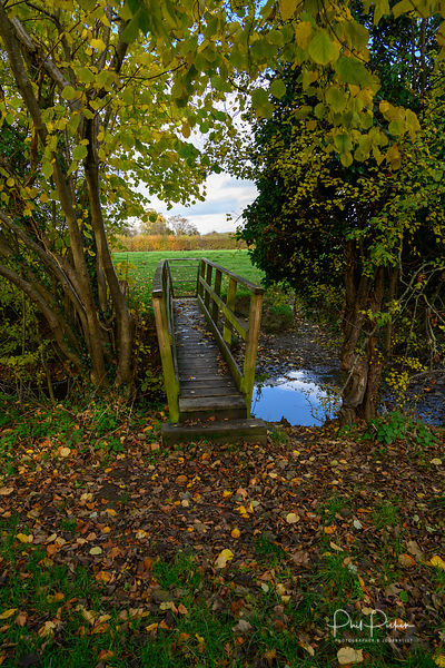 Autumnal rural wooden footbridge over small stream.