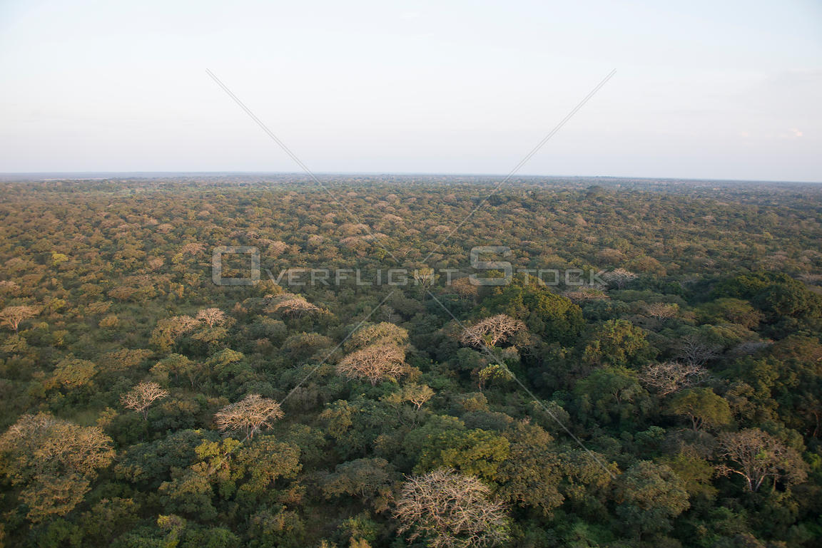Aerial photograph of Garamba National Park, Democratic Republic of the Congo, February 2012.