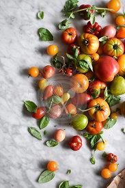 Fresh summer tomatoes and basil