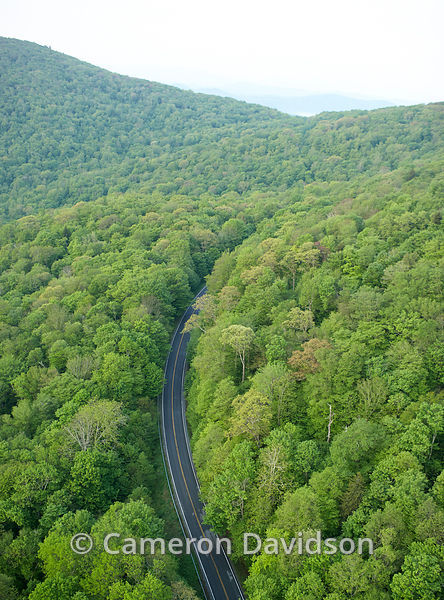 Aerial photogrpah of Grayson Highlands State Park in Virginia