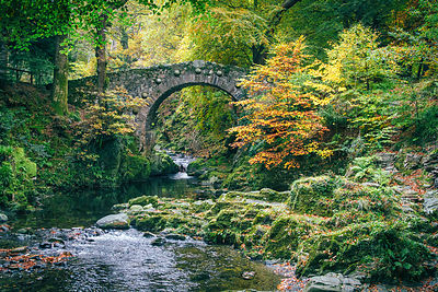 Foleys_bridge_tollymore_2016