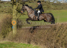 Hilary Butler jumping a big hedge at Ladywood - The Cottesmore Hunt at Ladywood