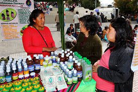 Pregnant girl and her mother shopping at stall selling alternative medicines at trade fair promoting products made from coca ...