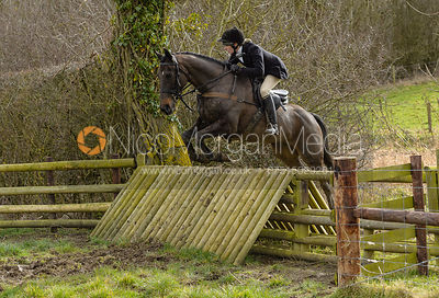HB jumping a fence at Peake's Covert