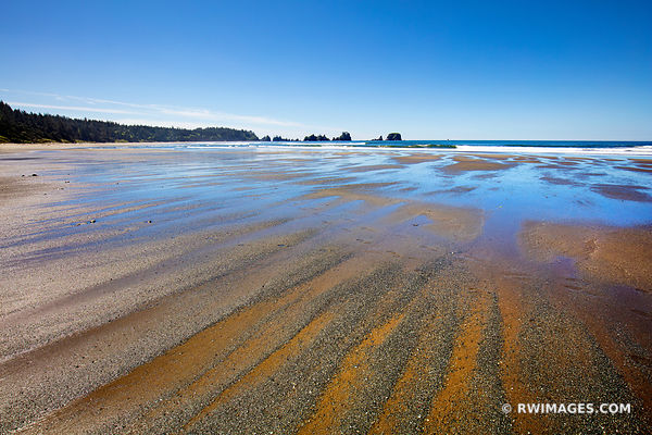 SHI SHI BEACH POINT OF THE ARCHES PACIFIC NORTHWEST OLYMPIC NATIONAL PARK COLOR