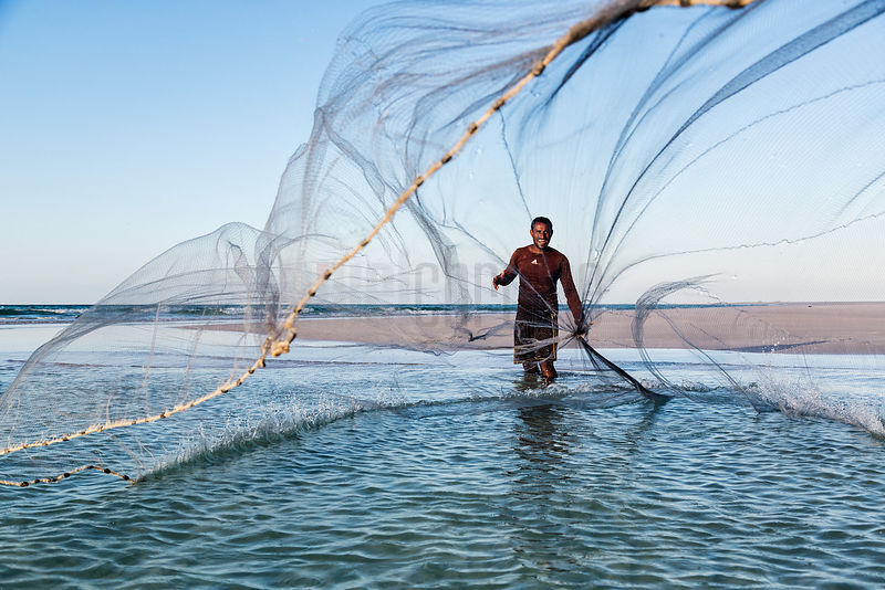 Fisherman Throwing a Seine Net