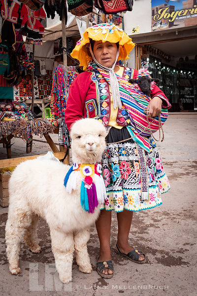 Peruvian Woman posing with young Alpaca and baby lamb