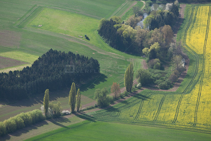 Aerial landscape in spring with flowering rape field,  trees and hedgerows, green meadows, and trees following a stream to a ...