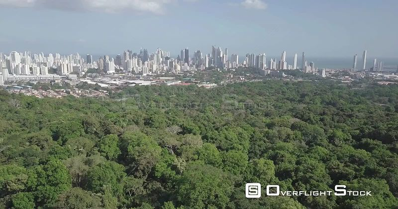 Panama City Cityscape as Seen Over a Tropical Jungle