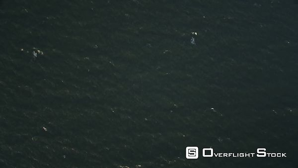 Over open ocean off the New Jersey coast at 1000 feet elevation. No horizon. Shot in November