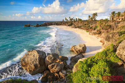 Exotic tropical beach at sunrise from high point, Barbados