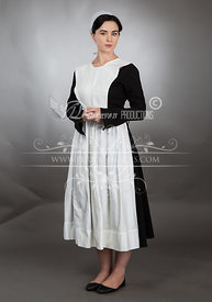 Amish Stock photos