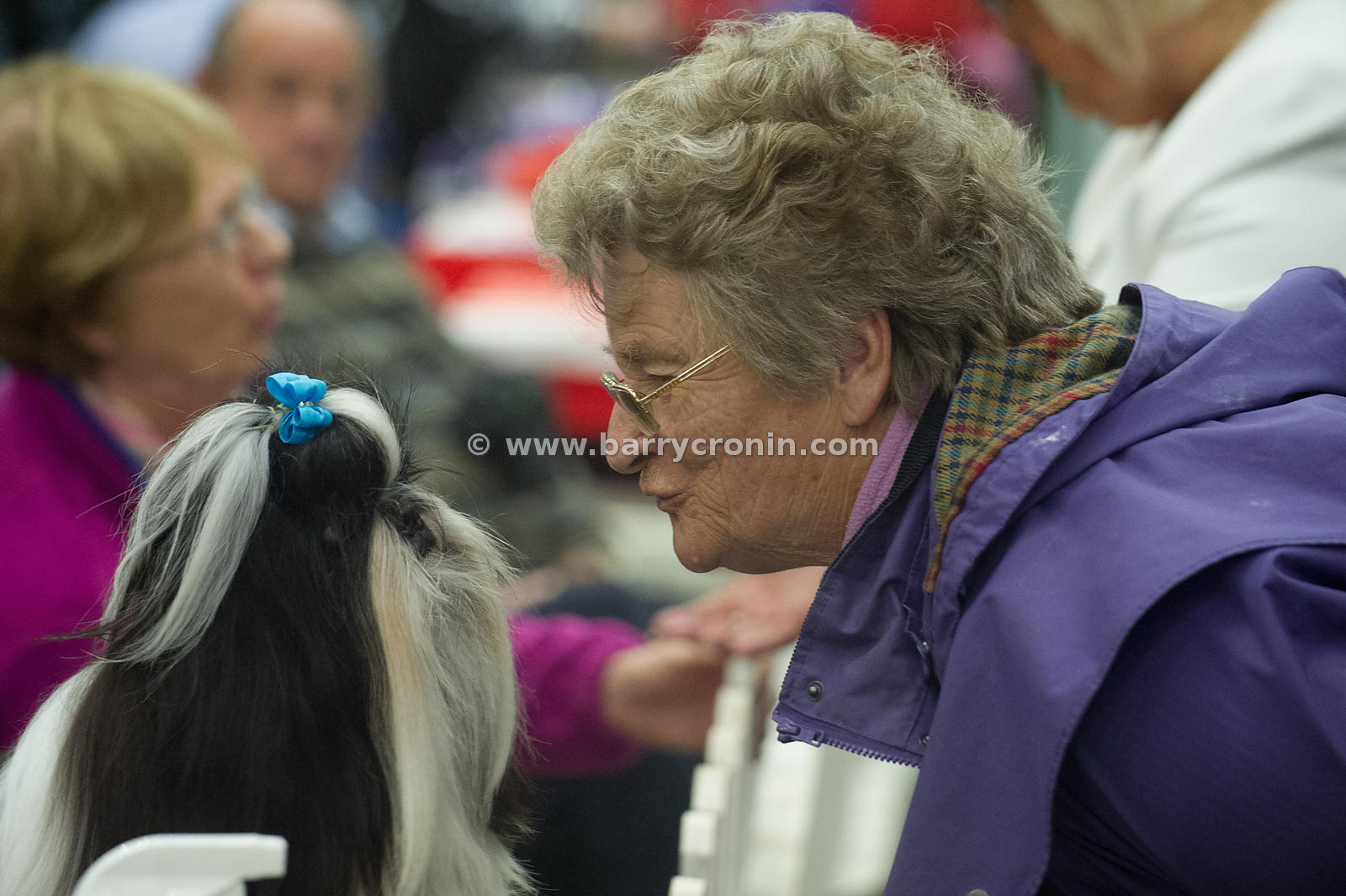 5th October, 2014.IKC (Irish Kennel Club) International show at Cloghran, Dublin. Pictured is Judge Josie Foley from Kilkenny...