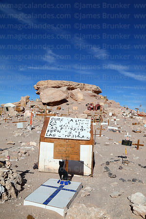 Grave of cat in pet cemetery in Atacama Desert near Calama, Region II, Chile