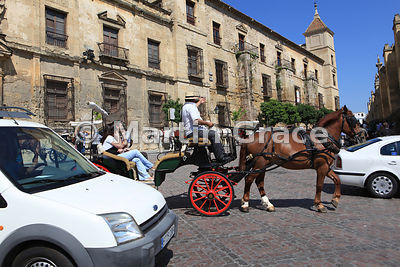 Tourists in pony and trap in dense traffic by the Bishop's Palace (Obispado de Cordoba), Cordoba, Andalucia, Spain