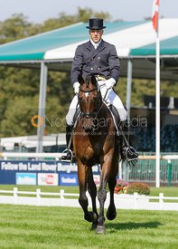 Alexander Peternell and ASIH - dressage phase,  Land Rover Burghley Horse Trials, 5th September 2013.