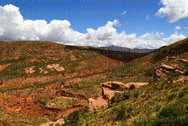 Rock formations, red soil and river valleys that are the headwaters of the Pilcomayo river, Potosí Department, Bolivia