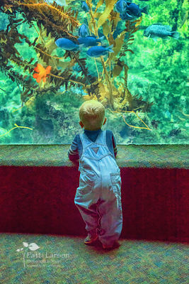 The Wonders of Nature Through a Child's Eyes