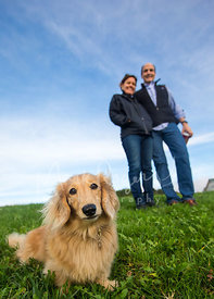 Dog on grassy hill in front of couple