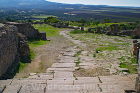 Steps leading from the Forum, Volubilis, Morocco; Landscape