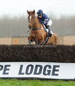 GOLDEN TOBOUGGAN (Claire Hardwick) - Midlands Area Club Point-to-point 2017, Thorpe Lodge 29/1