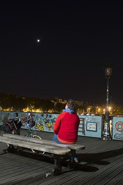 DA_BIRNBAUM_eclipse_lune_paris_2015