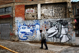 Man walking past unusual wolf / dog head street art /  graffiti on wall, La Paz, Bolivia