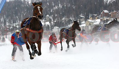 White Turf Event Skikjoering on the frozen lake of St.Moritz