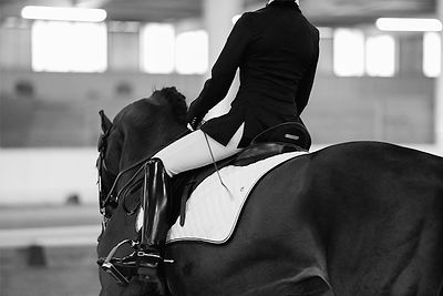 MID OHIO DRESSAGE SPRING I AND II