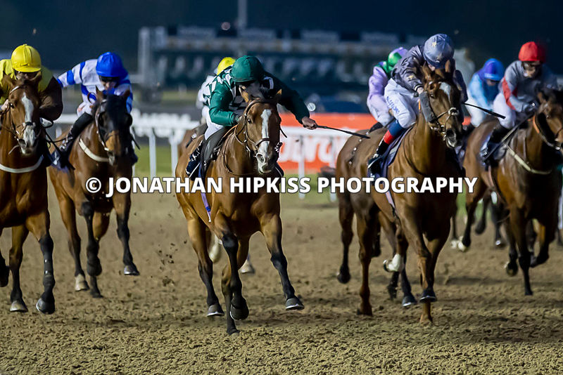 Wolverhampton Horse Racing 2019 photos