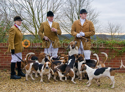 Westerby Bassets at Hill Top Farm 3/1