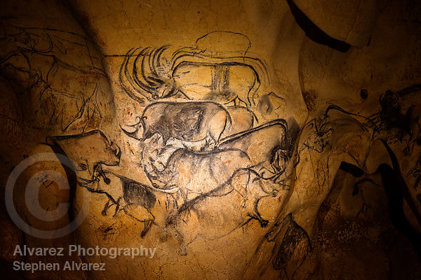 Rhino Panel in the lowest section of Chauvet Cave, Ardeche France