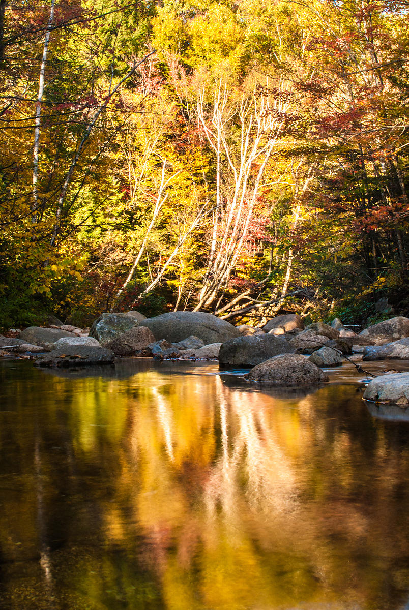Fall colors in the White Mountains, New Hampshire